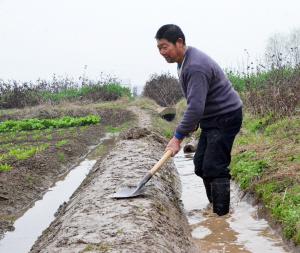 多,预示一年的农事活动即将开始.图为当日澧县澧东乡十回村村民